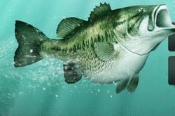 Крутую Рыбалку 3Д