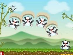 Сумасшедшие панды