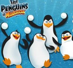 Пингвины Мадагаскара на двоих