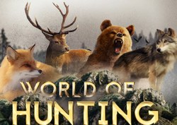 Игра охота 3D