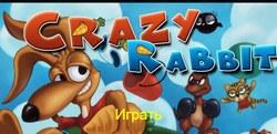 Игра сумасшедший кролик