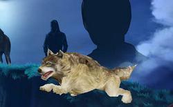 Wolfblood - Волчья кровь